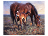 The Bay Filly Lámina giclée de primera calidad por Jack Sorenson