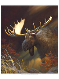 Moose Portrait Posters by Leo Stans
