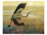 Foggy Heron I Giclée-Premiumdruck von Chris Vest