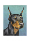 Dog Portrait, Dobie Print by Jill Sands