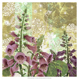 Foxglove Meadow I Giclee Print by R. Collier-Morales
