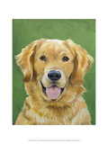 Dog Portrait, Golden Prints by Jill Sands