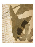 Pressed Leaf Assemblage III Poster