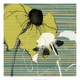 Layered Poppies I Print by Jennifer Goldberger