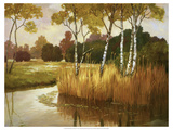 Reeds, Birches and Water II Premium Giclee Print by Graham Reynolds