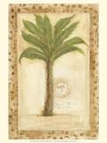 Palmetto Palm Art by Marianne D. Cuozzo