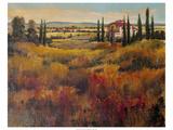 Tuscany I Plakater af Tim O'toole