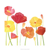 Simply Poppies I Prints by Megan Meagher
