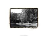 Serene Lake III Prints by Laura Denardo