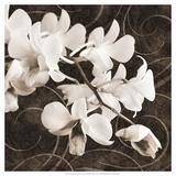Orchid and Swirls II Giclée-Premiumdruck von Christine Zalewski