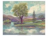Riverscape II Kunst von Victor Valla