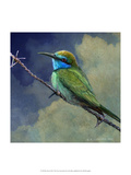 Bee Eater Prints by Chris Vest