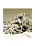 Fences in the Sand II Poster by Noah Bay