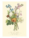 Plentiful Bouquet IV Art by T.L. Prevost
