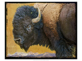 Bison Portrait III Posters by Chris Vest