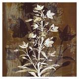 Prairie Mix V Giclee-tryk i høj kvalitet af John Butler