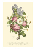 Plentiful Bouquet III Posters by T.L. Prevost