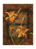 Day Lily II Prints by Janet Stever