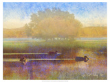 Ducks in Soft Mist Premium Giclee Print by Chris Vest