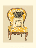 Pampered Pet I Premium Giclee Print by Chariklia Zarris