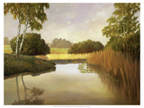 Reeds, Birches and Water I Premium Giclee Print by Graham Reynolds