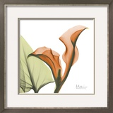 A Gift of Calla Lilies in Orange Wall Art by Albert Koetsier