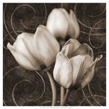 Tulip and Swirls I Giclée-Premiumdruck von Christine Zalewski
