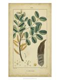Vintage Turpin Botanical VII Art by  Turpin