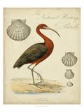 Heron Anthology II Affiches