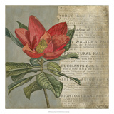 Vintage Fleur Rouge I Prints by Megan Meagher