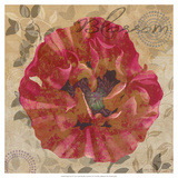 Poppy Swirl VI Prints by Louise Montillio