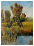 Sunkissed Field I Premium Giclee Print by Tim O'toole