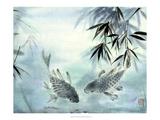 Carpes japonaises Affiches par Nan Rae
