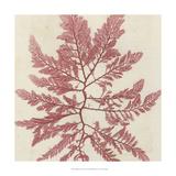 Brilliant Seaweed I Poster