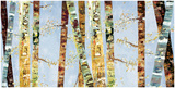 Bark Abstract Print by Carmen Dolce