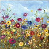 Sunshine Meadow II Prints by Carmen Dolce