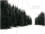 The Forest Giclee Print by Ross Marks