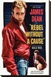 Rebel Without a Cause Stretched Canvas Print