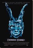 Donnie Darko Stretched Canvas Print