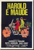 Harold y Maude (Joven chalado millonario seduce a vieja chiflada) Reproducción en lienzo de la lámina