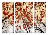 Kale takken en rode esdoornbladeren die langs de snelweg groeien Print van Raymond Gehman