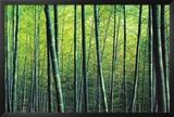 El bosque de bambúes Póster por Robert Churchill