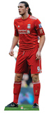 Liverpool FC-Andy Carroll Action Stand Up