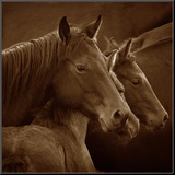 Tenderness Mounted Print by Tony Stromberg