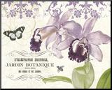 Jardin Botanique II Mounted Print by Paula Scaletta