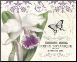 Jardin Botanique I Mounted Print by Paula Scaletta