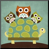 Three Owls on Turtle Mounted Print by Nancy Lee