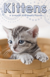 Kittens - 2013 Weekly Planner Calendar Calendars