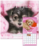 Keith Kimberlin Puppies - 2013 Calendar Calendars