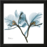 Orchids in Blue Art by Albert Koetsier